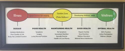 A health continuum, from illness to wellness.