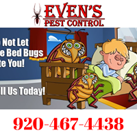 Gallery Image bed_bugs.png