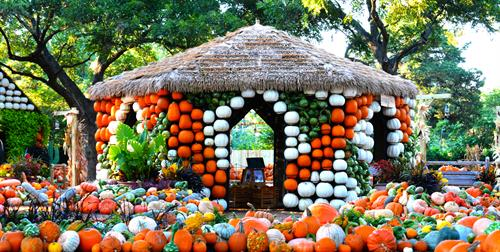 Pumpkin House in the Pumpkin Village