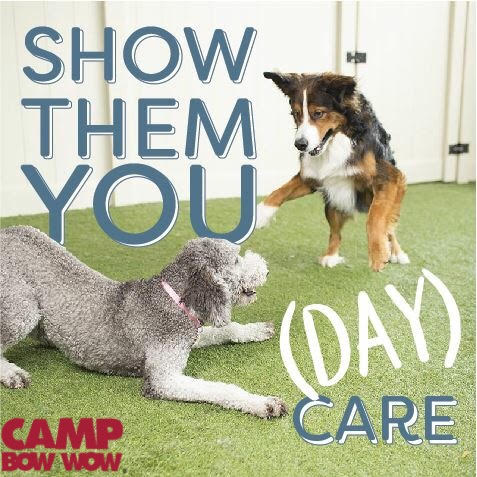 Gallery Image Show_them_you_Day_Care.jpg