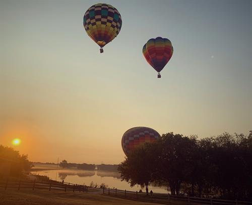 Gallery Image Hot_Air_Balloons_at_NRC.jpg