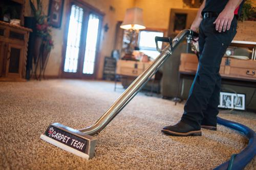 Carpet Cleaning by Carpet Tech