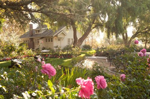 Pat Nixon Rose Gardenes