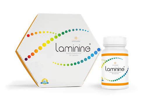 LAMININE, a stem cell regeneration supplement for total body health