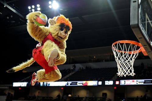 Gus, the mascot!
