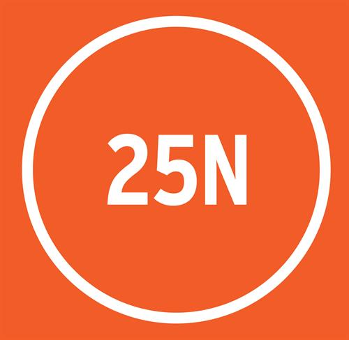 Gallery Image 25n-logo_orange.jpg