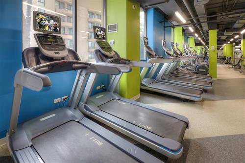Wheaton Center's newly renovated fitness center promotes health and wellness!