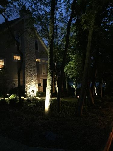Landscape lighting lets you enjoy the beauty of your yard into the evening.