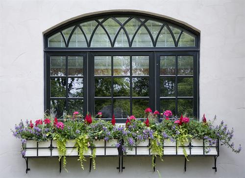 Imagine this lovely windowbox outside your kitchen window!