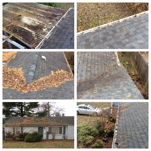 Gutter Cleaning on ranch home