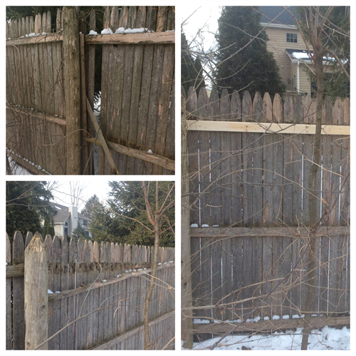 Repair privacy fence