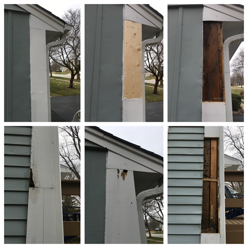 Wood rot repair on side of home and then repaint area.