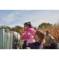 Join Kline Creek Farm's Annual Corn Harvest Weekends in October