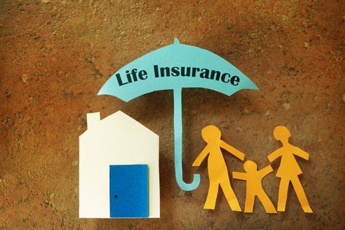 Term & Permanent life insurance plans.