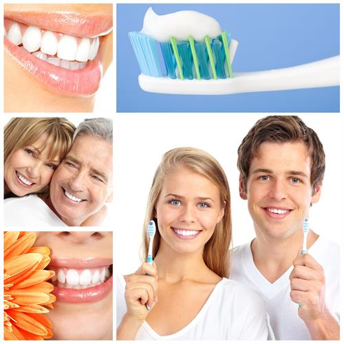 Dental Insurance for individuals & groups.