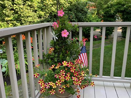 Flowers throughout property