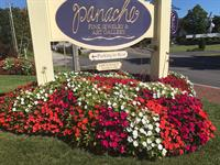 Panache Fine Jewelry and Art Gallery