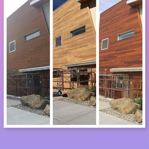 Jasper Library Exterior. Strip and Restain