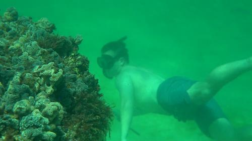 Snorkel Adventures in Santa Rosa Beach by Rent Gear Here