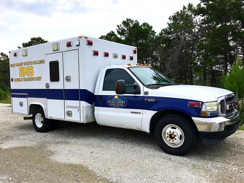 GCSC EMS Graphics - Side Profile