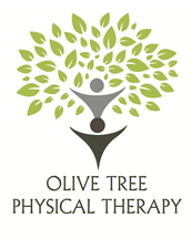 Olive Tree Physical Therapy, LLC