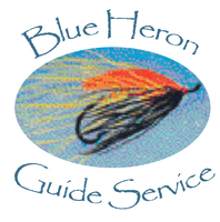 Blue Heron Guide Service
