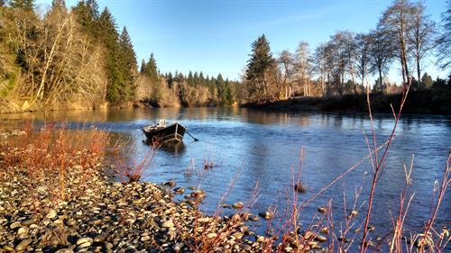 Gallery Image Blue_Heron_Guide_Service_-_Larry_Ford_Fishing_Bogachiel_River.jpg