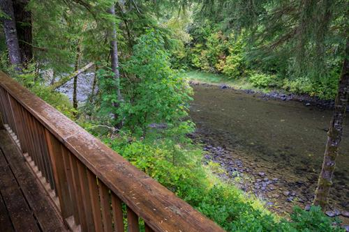 Cozy 2 - Sol Duc River from view back deck!
