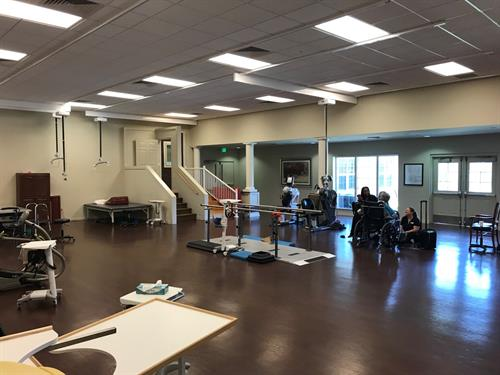 Our expansive therapy gym features the finest therapists from all 3 disciplines.