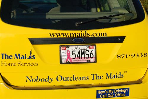 Gallery Image Cars-License_Plates_cropped.jpg