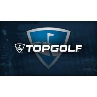 Topgolf: The Ultimate Drive