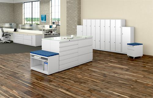 File Cabinets and Storage Options