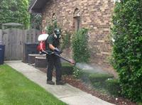 Mosquito Control just one of our services!