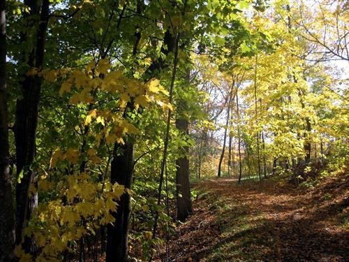Gallery Image AkermanPark.JPG