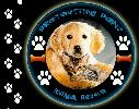 Protecting Paws Animal Rescue