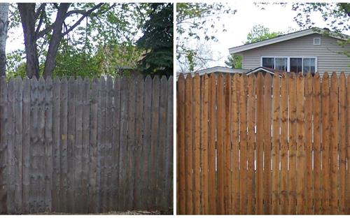Wood Fence Cleaning