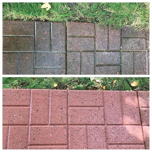 Landscape Paver Cleaning