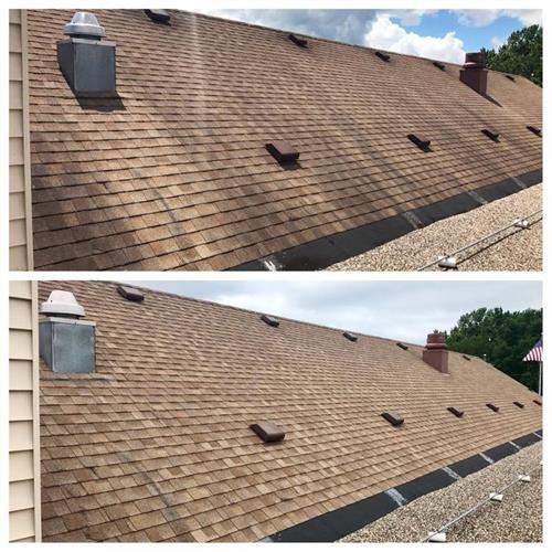 Roof Stain Removal