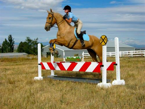 My jumps are custom made. Do you have an idea? Maybe jumping over train tracks?