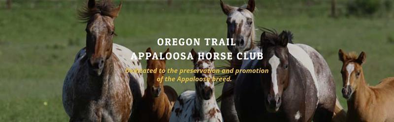 Oregon Trail Appaloosa Horse Club
