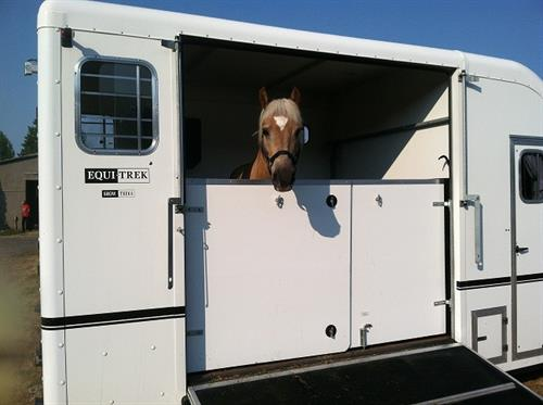 So easy for your horse to load and relax !