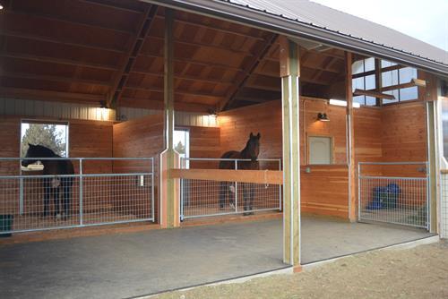 Two stall run in barn