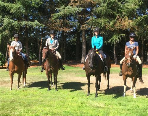 Horsey Friends Last Forever!!