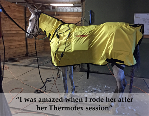 Thermotex Infrared Blanket and Neck Wrap