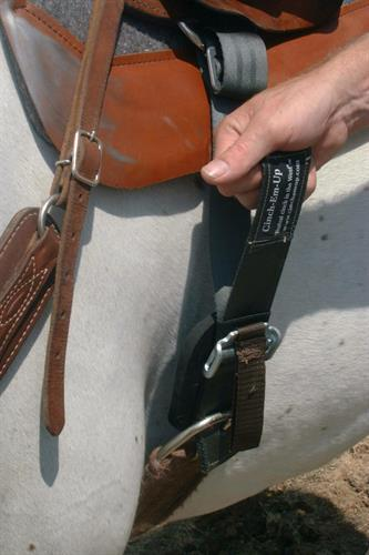 "Step 4 - Pull up on 2"" strap to tighten from ground or while mounted"