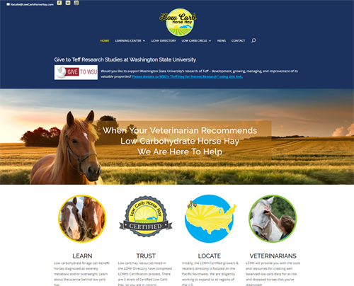 Developed this exciting website for Low Carb Horse Hay. What a hit! I mean 1,000s of hits!