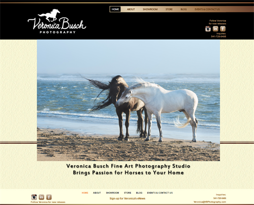 Veronica Busch is an amazing equine photographer. Visit her website & store