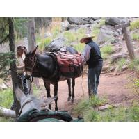 Leave No Trace for Horsemen - The Essential Outdoor Ethic for the Horseman