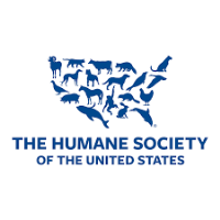 The Humane Society of the US funds over $100,000 in grants to equine rescues