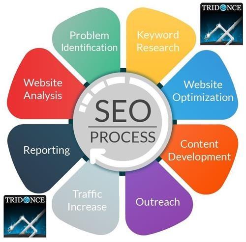 Search Engine Experts and Authority Link Builders.